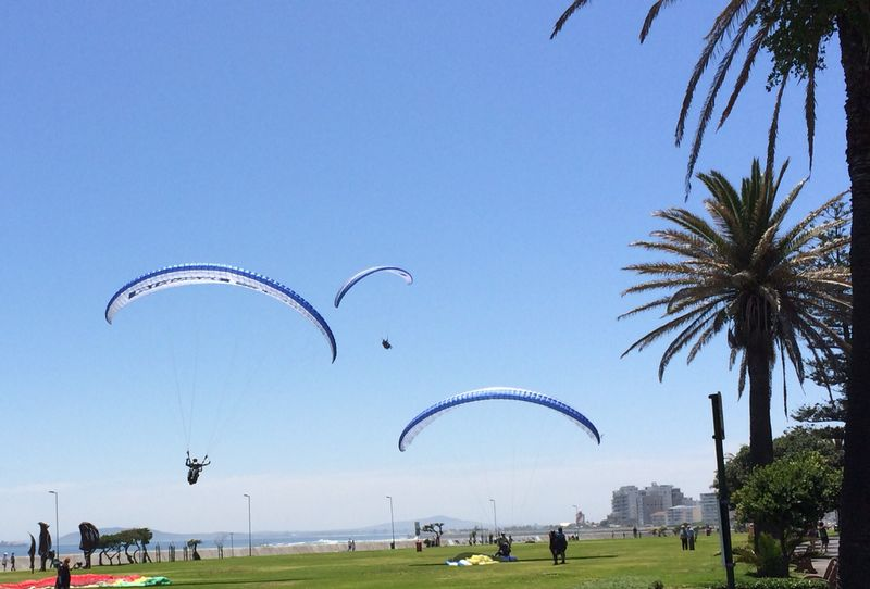 Landing in Seapoint with new Bidvest Bank branded paragliders